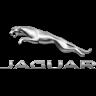 jaguar-familias-numerosas